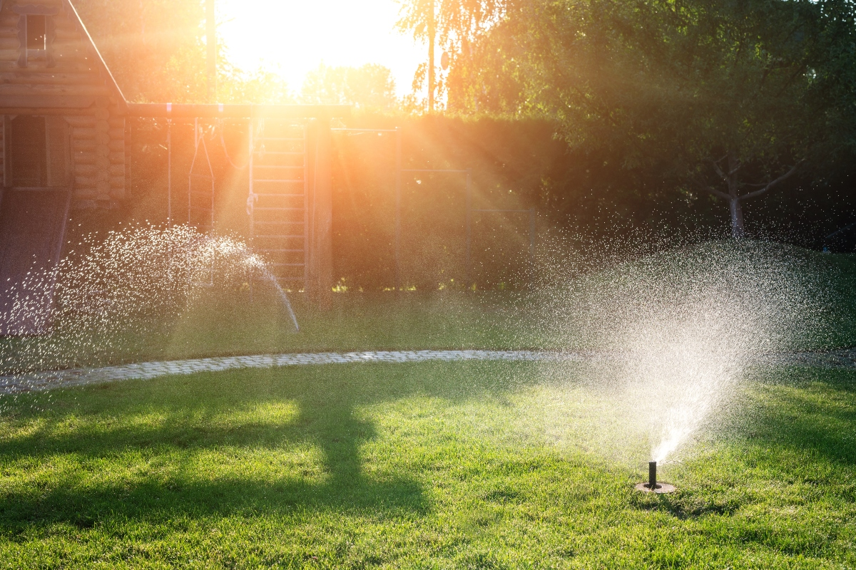 Why are landscape irrigation and drainage important? Proper hydration keeps your yard and plant life healthy without causing floods or other issues. Learn more.